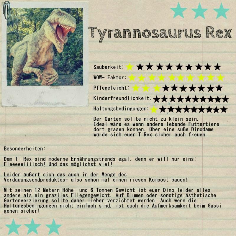Dino Infografik