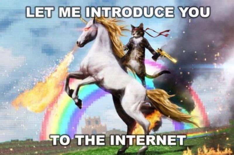 unicorn teaser meme
