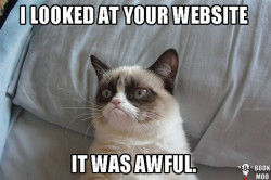 meme-website-awful
