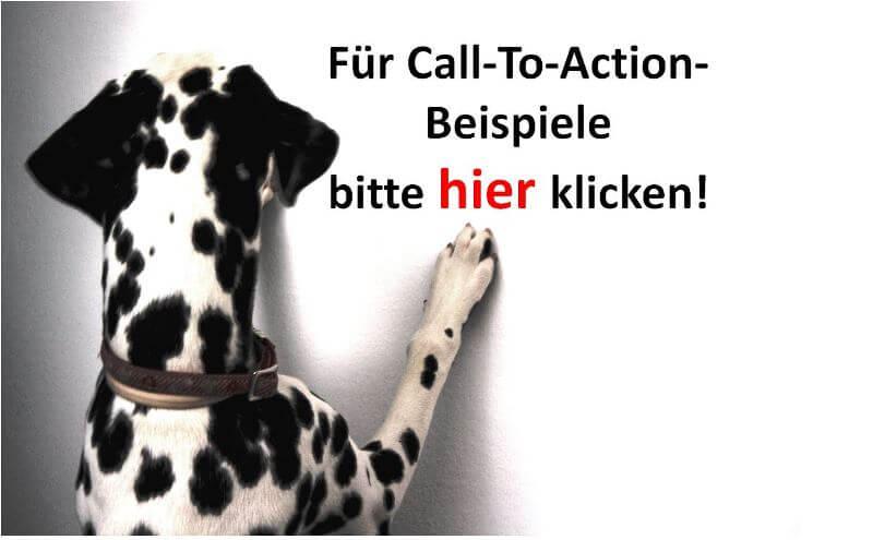 Bürohund Amira klickt den Call-To-Action