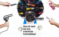 mops mit afro_contentpflege