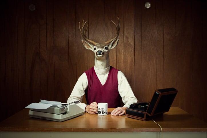 Texte-Einmaleinsen wie ein Boss: Mann mit Rehmaske an Schreibtisch
