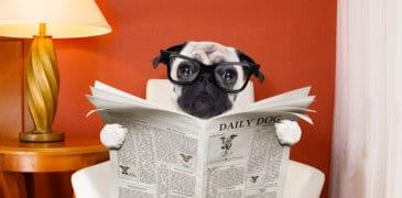 Reine Klick-Magie! 15 Tipps für meisterhafte Überschriften