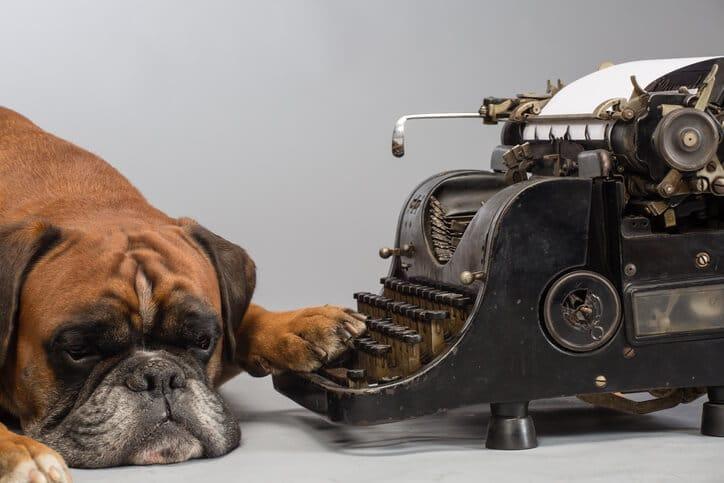 Hund vor Schreibmaschine