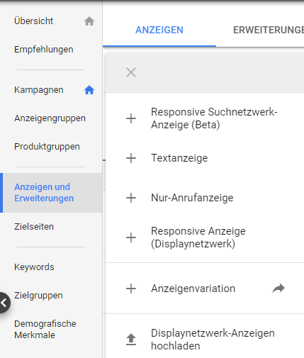 Screenshot aus Google Ads Interface