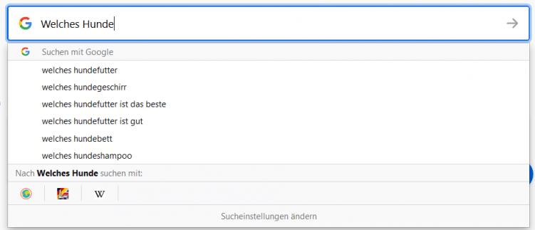 google-suggest_abfrage