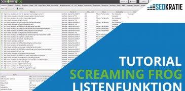 Video: Screaming Frog Listenfunktion: Schnell Seiten mit 404-Fehler finden