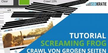 Video: So kannst du problemlos große Seiten mit dem Screaming Frog crawlen