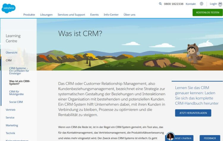 Salesforce CRM Landingpage