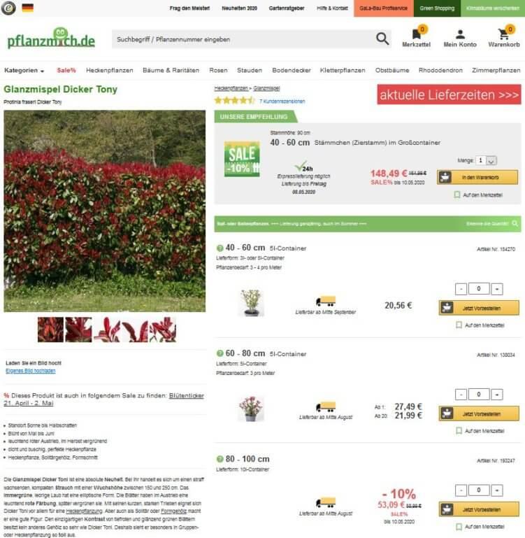 Glanzmispel Landingpage Online Shop Pflanzmich